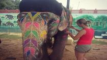 Day Excursion with Elephants in Jaipur , Jaipur, Full-day Tours