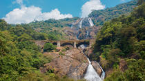 Private Tour: Jungle Adventure from Goa, Goa, null