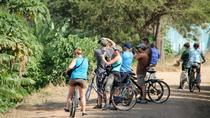 Udaipur Lake Loop Bicycle Tour, Udaipur, Bike & Mountain Bike Tours