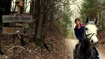 HORSEBACK RIDING IN BLED, Bled, Horseback Riding