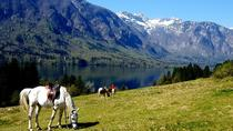 Trail riding in Triglav National Park, Bled, Horseback Riding