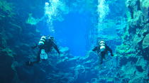 4-Hour Small-Group Diving Tour From Thingvellir National Park, Reykjavik, Scuba Diving