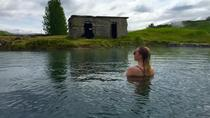 Small Group Golden Circle and Secret Lagoon Hot Springs Tour from Reykjavik, Reykjavik, Day Trips