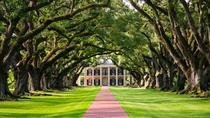 Oak Alley and Evergreen Plantations Plus Swamp Tour from New Orleans, New Orleans, Cultural Tours