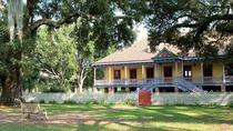 Oak Alley and Laura Plantation Group Tour from New Orleans, New Orleans, Plantation Tours