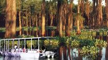 Oak Alley and Laura Plantation Plus Swamp Tour from New Orleans, New Orleans, Cultural Tours