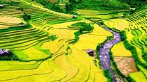 2 days 1 night Private tour Sapa and Ham Rong trekking, day bus from Hanoi, Hanoi, Private ...