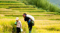 2 days 2 nights Private tour Sapa trekking homestay, train and luxury bus, Hanoi, Private ...