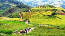 3 days 3 nights Private tour Sapa trek Homestay and Hotel experience from Hanoi, Hanoi, Hiking & ...