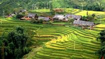 3 days 3 nights Private tour Sapa trekking homestay experience from Hanoi, Hanoi, Private ...