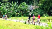 3 nights 2 days Private tour Sapa biking and homestay experience from Hanoi, Hanoi, Private ...