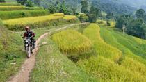 3 nights 2 days Private tour Sapa motorbike and homestay experience from Hanoi, Hanoi, Motorcycle...