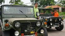 My Son Sanctuary- Countryside Jeep Full Day Tour from Hoi An, Hoi An, 4WD, ATV & Off-Road Tours