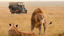 15-Day South Africa Uncovered: Kruger and Garden Route from Jo'burg to Cape Town, Johannesburg, ...