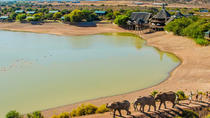 2-Day Glamping and South African Wildlife Safari from Cape Town, Cape Town, Multi-day Tours