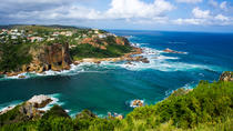 4-Day Garden Route Adventure Guided Tour and Safari from Cape Town, Cape Town, Multi-day Tours
