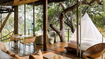 5-day Singita Kruger Safari - The Land of the Big Cats Private Tour, Kruger National Park, Private ...