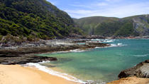 7-Day Garden Route with Winelands Tour including Addo Safari from Cape Town, Cape Town, Multi-day...