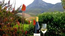 Full-Day Hemel-en-Aarde Valley Wine and Whale Coast Private Tour from Cape Town, Cape Town, null