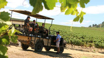 Full-Day Private Wine Safari and Brandy Tasting in Stellenbosch from Cape Town, Cape Town, Wine ...