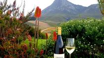 Hemel-en-Aarde Valley Wine and Whale Coast Private Tour from Cape Town, Cape Town, Kayaking & ...