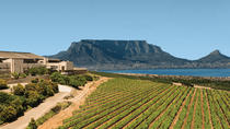Private Tour: Durbanville Wine Valley Tasting Tour from Stellenbosch, Stellenbosch