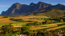 Shore Excursion: Private Stellenbosch Winelands Taste Tour from Cape Town, Cape Town, Ports of Call ...