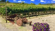 Chianti Wine and Vinci half day Tour from Montecatini Terme, Montecatini Terme, Day Trips