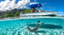 Private 4-Hour Boat Tour of Moorea Lagoon, Moorea
