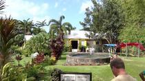 Best of St. Kitts Highlight Tour