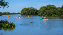 Half Day Kayaking Tour From Siem Reap, Siem Reap, Other Water Sports