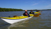 3 Day Everglades Kayaking and Camping Tour, Everglades National Park
