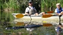 Everglades National Park Kayak Eco Tour from Naples , Naples, Eco Tours