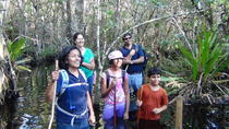 Small-Group Tour: Florida Everglades Swamp Walking Eco-Tour, Everglades National Park, Eco Tours