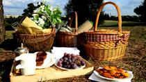 Barefoot in the Park: Your Ultimate Organic Picnic in Rome, Rome, Food Tours