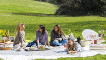Barefoot in the Park: Your Ultimate Organic Picnic in Rome, Rome, Private Sightseeing Tours