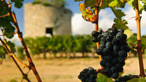 Bordeaux Super Saver: Gourmet Food Walking Tour with Lunch plus Médoc Wine Tasting, Bordeaux