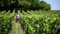 Bordeaux Super Saver: Médoc Wine Tour and Lunch plus St-Emilion or Graves, Bordeaux