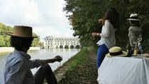 Small-Group Half-Day Tour to Chenonceau and Da Vinci Clos Lucé Castles from the Town of Tours,...