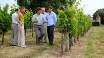 Small-Group Medoc or St-Emilion Wine Tasting and Chateaux Tour from Bordeaux