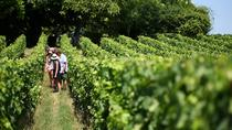 Small-Group Medoc Wine Tasting and Chateaux Tour from Bordeaux, Bordeaux, Wine Tasting & Winery ...