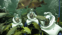 Underwater Helmet-Diving Experience at the Miami Seaquarium, Miami, Attraction Tickets