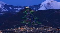 Full Day Tour from Rome to Gubbio: The biggest Christmas Tree in the World, Rome, Full-day Tours