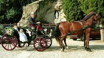 Horse Carriage for Wedding, Rome, Horse Carriage Rides