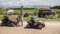 2 Hrs Seaside Quad & Buggy Safari Tour in Paphos, Paphos, Day Trips