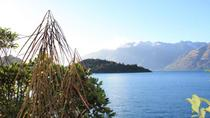 Lake Wakatipu Nature Walking Tour from Queenstown, クイーンズタウン