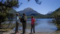 Ultimate Nature Experience from Queenstown: Dart River Jet Boat Ride and Lake Sylvan Hike, ...