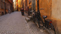Private Tour: Fietstocht Stockholm door Kungsholmen en de eilanden Långholmen en Södermalm, Stockholm, Private Sightseeing Tours
