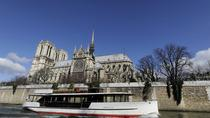 Seine River Cruise: Sightseeing with Optional Aperitif or Snack, Paris, Day Cruises