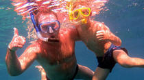 Snorkeling Excursion, Sharm el Sheikh, Day Trips
